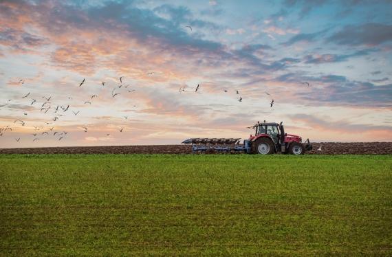 Parama jaunųjų ūkininkų įsikūrimui